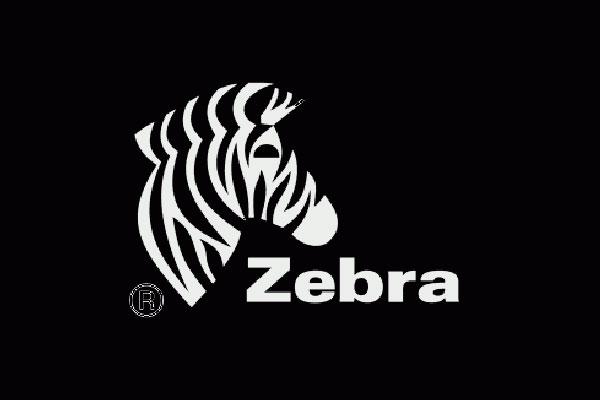 Zoo the Zebra